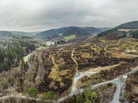 Sensationelle Investition! Grundstück mit Projektstudie für Wohn/Ferienprojekt mit Badesee, Nähe Bad Tatzmannsdorf