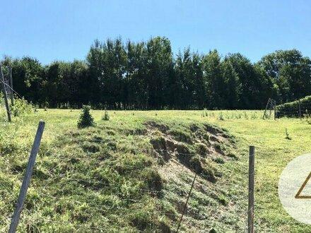 Baugrundstück in Weisskirchen