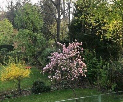 moderne Terrassenwohnung in Hietzinger Bestlage zu mieten!