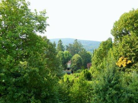 Traumhafter Ausblick in Grünruhelage mit Pool am Dach und Loggia - 4 Zimmer 98m²