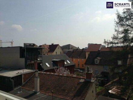 MODERNES LUXUS PENTHOUSE! 3-Zimmer-Wohnung in toller Stadtlage! Über den Dächern!