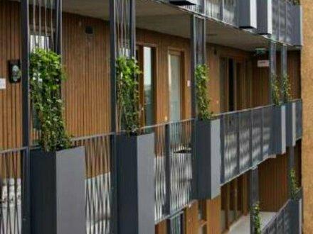 Top geplante Drei-Zimmer-Wohnung mit großer Terrasse und voller Möblierung - Fertigstellung 2021!
