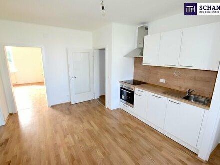 Freundliche Drei-Zimmer-Wohnung im Erstbezug nach liebevoller Sanierung! Anschauen lohnt sich!!!