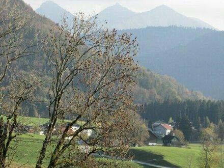 Faistenau, Galeriewohnung für Anleger oder Familie
