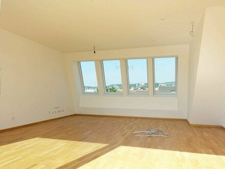 ERSTBEZUG - Sonnige DG Wohnung auf einer Ebene - Klimaanlage und Garage möglich