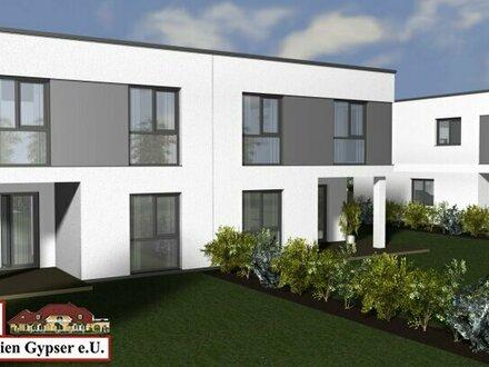 Haustyp 1