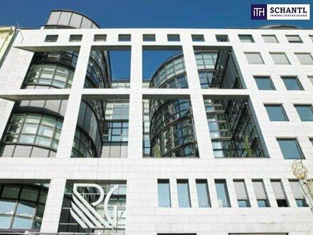 FLEXIBLES BÜROSYSTEM IN 1010 WIEN + HOCHFREQUENZLAGE + Größen von 12m² - 300m² verfügbar!