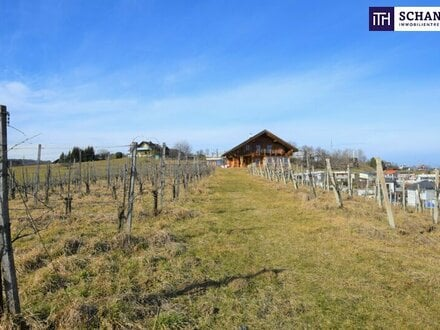 Grundstück in absoluter Ruhelage umgeben von Weinbergen in St. Bartholomä! BD von 0,2-0,5!