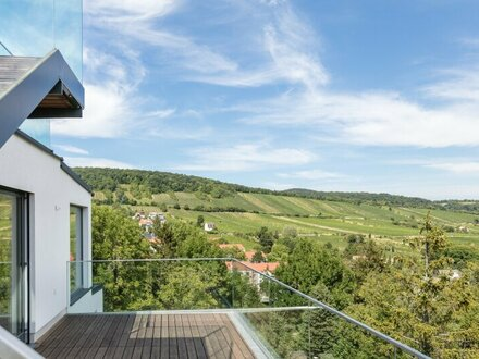 EUM - Penthouse mit Weitblick ins Grüne! 4-Zimmer-Erstbezug mit vier Terrassen