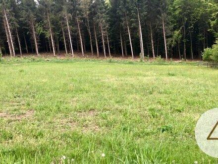 Baugrundstück Nähe Vichtenstein