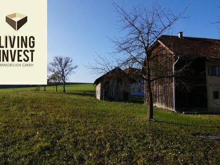 Grundstück mit altem Sacherl in Graßing nahebei Weißkirchen zu verkaufen!