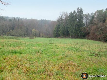 Nähe Fürstenfeld: Baugrundstück in ruhiger Waldrandlage
