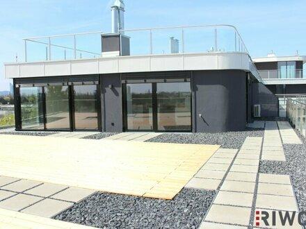 ENTSPANNUNG und Erholung in der PENTHAUS-Wohnung mit Blick auf die Alte Donau
