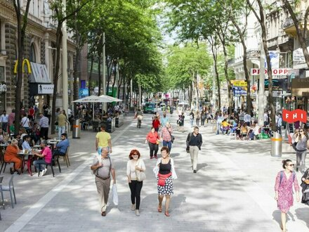Altbauwohnung ab JULI 2019 mitten im Geschehen***Fußgängerzone Mariahilfer Straße