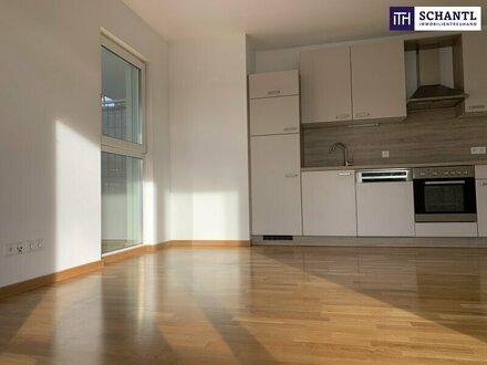 SONNE-PUR! TRAUMHAFTE 2-Zimmer Wohnung + RIESIGE SONNENTERRASSE + PROVISIONSFREI!