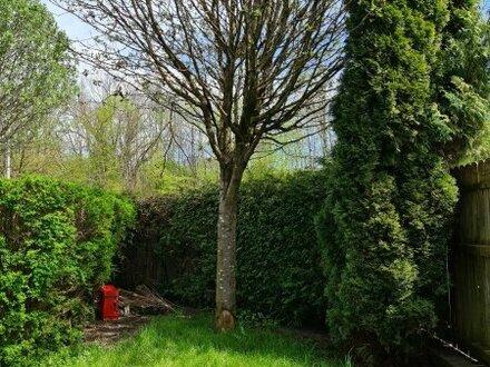 Gartenwohnung Nahe Hellbrunner Allee