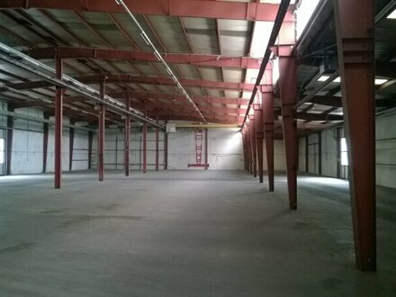 800 m² Hallenfläche nahe Westautobahn