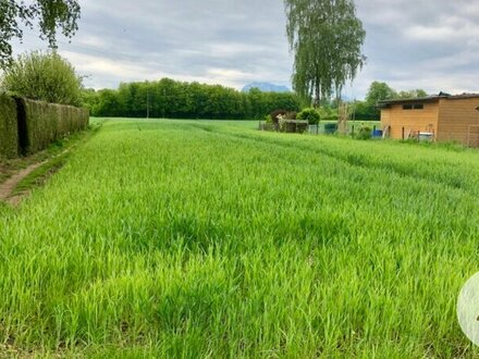 Baugrund mit großem Grünlandgrundstück