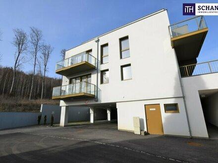 Natur pur! Perfekt aufgeteilte 4-Zimmer Wohnung mit riesiger Terrasse und Eigengarten umgeben von Bäumen!