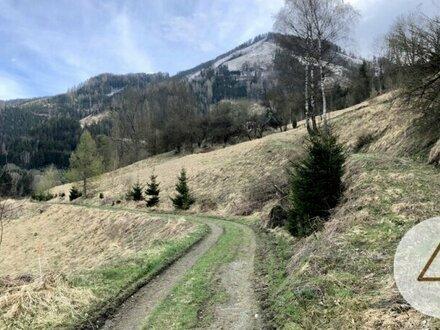 Besichtigungstag am 14.5.2021 !! Landwirtschaftliche Grundstücke mit Panorama-Ausblick!