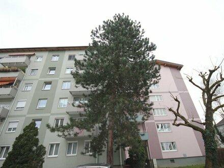 Aiglhof: 3,5-Zimmer-Wohnung für geschickte Hände!