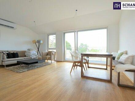 Gemütliches Apartment + Erstbezug + Neue Küche + hochwertige Ausstattung + E-Car Sharing