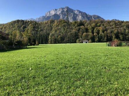 Sonniges Grundstück in Anif - Niederalm
