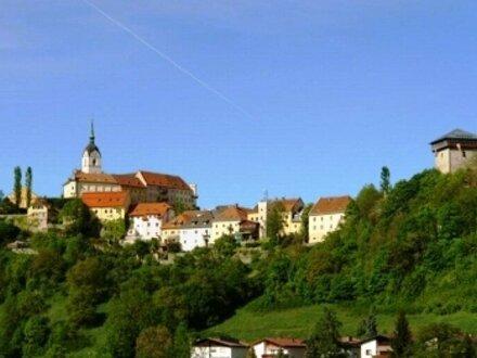 Starterwohnungen in Treibach-Althofen!