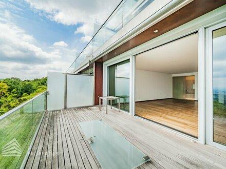 Moderne, helle 1-Zimmer Wohnung mit Terrasse, Nähe Kahlenberg