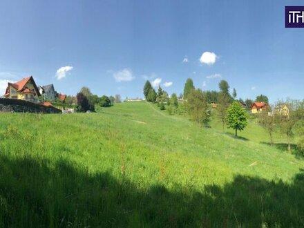SCHNÄPPCHEN! Baugrundstück in Toplage mit wunderbarem Ausblick - in Graz Umgebung + NICHT LANGE ZÖGERN!