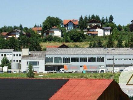 Gewerbebetrieb mit 4000 m² Nutzfläche - 12.500 m² Grundfläche mit Büro - Produktion - Lager - und Kühlräume.
