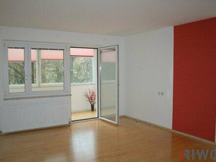 Befristet vermietete Wohnung mit großer Loggia (bis Juni 2020) - U3 Enkplatz
