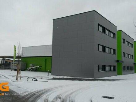 Im Süden von Salzburg - Neubau Betriebsobjekt zu vermieten