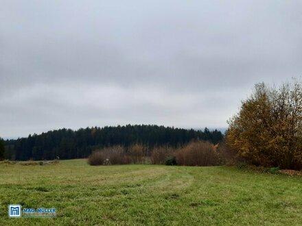 Landwirtschaftliche Wiesen 6891 m² im Tal gelegen Fresach