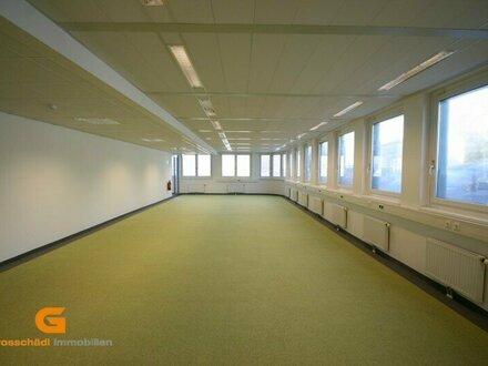 Salzburg Nord - Moderne Büro/Schauraumlösung zu vermieten