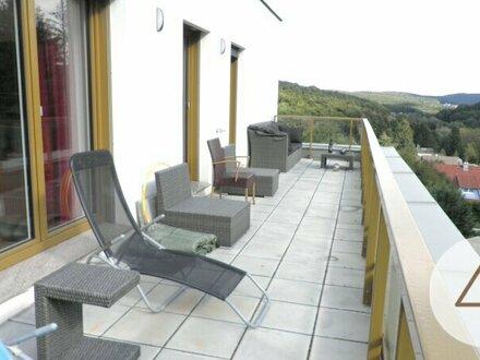 Dachterrassenwohnung für Naturverbundene