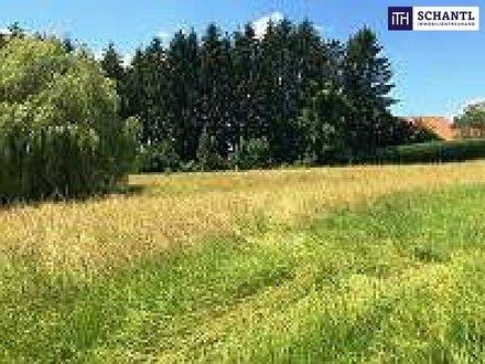 HIER MUSS MAN ZUGREIFEN: SONNENLAGE GARANTIERT - Perfekt gelegenes Grundstück in 8075 Hart bei Graz !