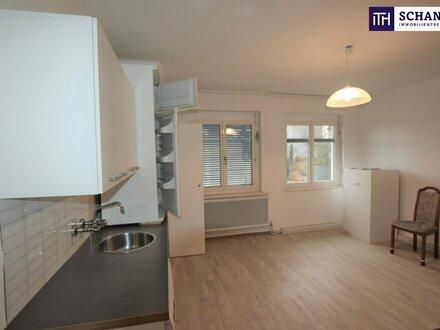 PREISSENSATION! Sehr preiswerte und gepflegte 80m² Wohnung mit Ausblick zum Plabutsch und zur Ruine Gösting - in Graz!