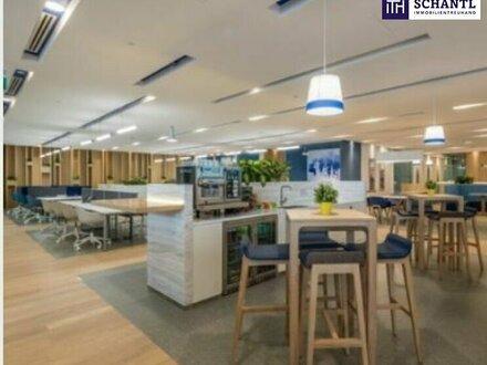 FREI VERFÜGBARE FLÄCHEN - AB SOFORT! FLEXIBILITÄT! Moderner Business-Standort!! PROVISIONSFREI! FULL-SERVICE: 9m² bis 300m²!