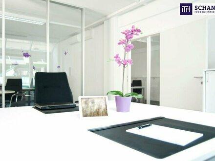 Modernes, serviciertes Büro mit 78 m² + 65 m² Terrasse in 1110 Wien + Küche!
