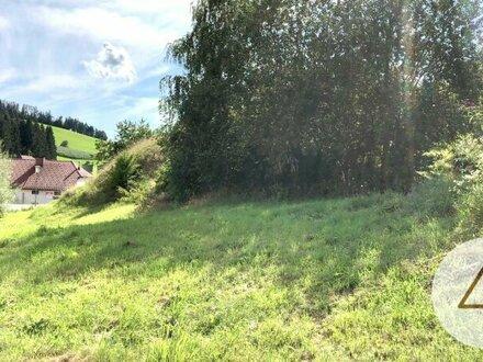 4 Grundstück in Aussichtslage kein Bauzwang