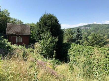 Erfüllen Sie sich den Traum von Ihrem Eigenheim nach Ihren Vorstellungen ! Grundstück am Fuße des Schafbergs zu verkaufen!