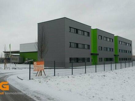 Südlicher Stadtrand - Neubau Büros zu vermieten