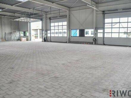 Neugeschaffene Betriebs-/Lagerhallen mit 177m²! Bezug Ende 2018 möglich