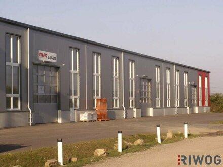 Helle Halle mit 500m² für Produktion oder Werkstatt!