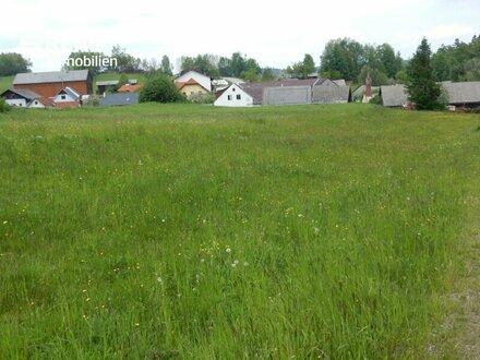 Harmannstein: Bauparzellen in ländlicher Grünlage