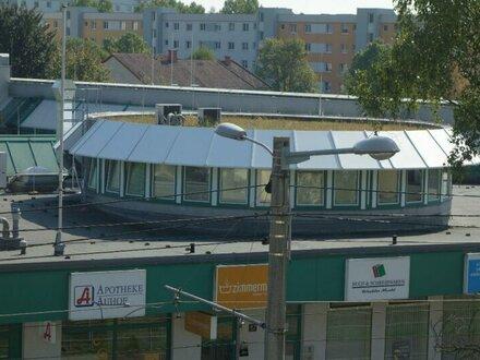 Provisionsfrei !! Büro in 4040 Linz - Altenbergerstraße - Nähe Universität
