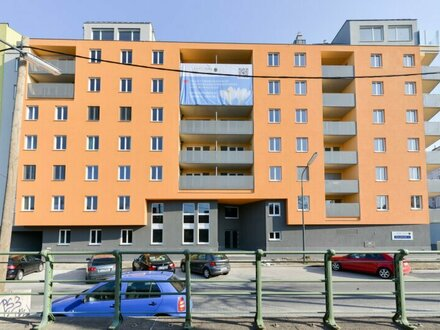 neuwertige 1-Zimmer-Wohnung! Nähe U4+U6 Station Längenfeldgasse! ab MAI!