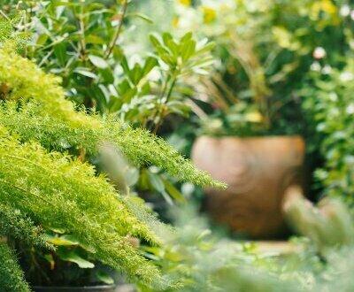 ITH - Herzige Gartenwohnung in einer wunderschönen Neubauwohnanlage! Provisionsfrei!