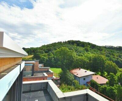 Ruhe, Natur und Lebensqualität! High End Doppel-Villa in ruhiger Bestlage + Wohnträume im schönen Wienerwald! Mit viel Liebe…